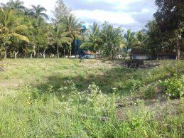 Posdaya Masjid Siap Luncurkan Kampung Kelor Sumberpucung